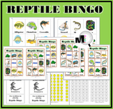 Reptile Bingo Game  - Animal Classification