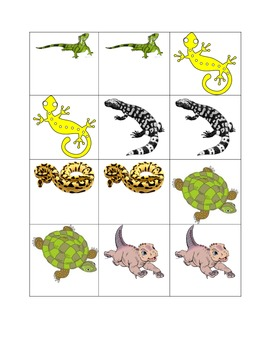 Reptile Memory Partner Game