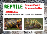 Reptile PowerPoint Presentation (Biology / Zoology)
