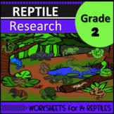 Reptile Research Second Grade