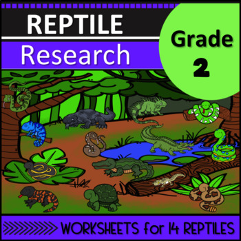 Reptile Research Second Grade