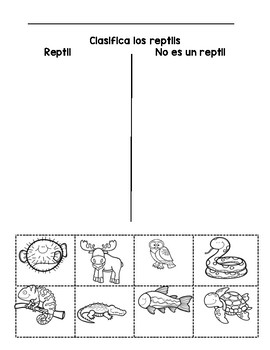 Reptile Sort in English and Spanish