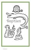 Reptile Trivia