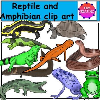 Reptile and Amphibian Realistic Clip Art