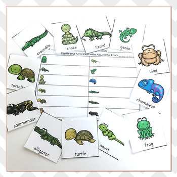 Reptile and Amphibian Vocabulary Practice - Write The Room