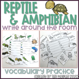 Reptile and Amphibian Vocabulary Write The Room