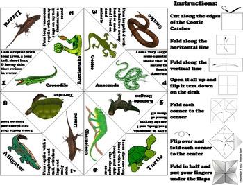 Reptiles Activity/ Foldable: Anaconda, Tortoise, Crocodile, Iguana, Rattlesnake