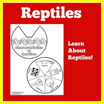 Reptiles Activity | Reptiles Craft | Reptiles Science | Re