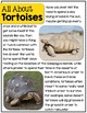 Reptiles- A Nonfiction Unit