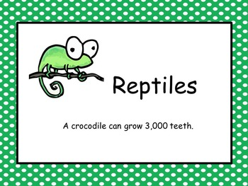 """Reptiles ~ """"A True Book"""" series"""