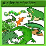 Reptiles & Amphibians Clip-Art: 8 B&W, 8 Color