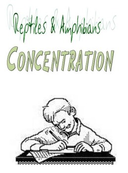 Reptiles & Amphibians Concentration