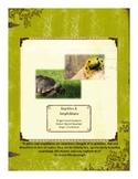 Reptiles&Amphibians Themed Nature Education Unit-Stage 2 (