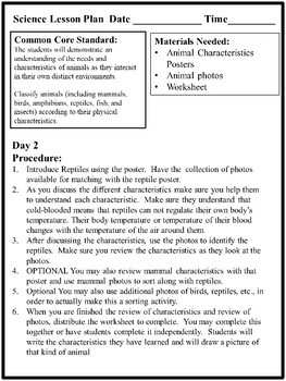 Reptiles - Characteristics of Animals Leson Plan, Photos, Poster