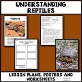 Reptiles - Characteristics of Animals Leson Plan, Photos, Poster