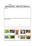 Reptiles - Diet