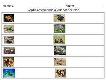 Reptiles Escribiendo alrededor del salón