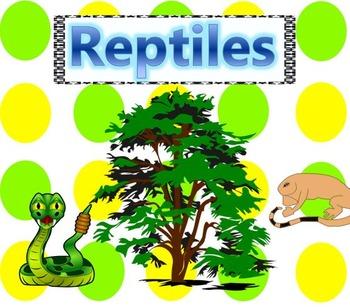 Reptiles Essential Vocabulary Through Fun Activities