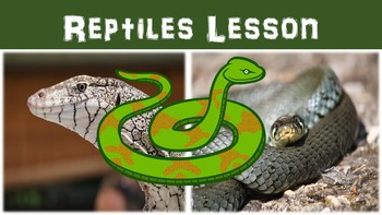 Reptiles Lesson with Power Point, Worksheet, and Color Activity