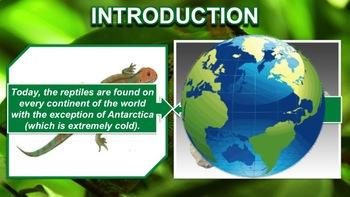 Reptiles - PowerPoint