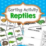 Reptiles Sorting Activities