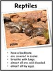 Reptiles - Tab Book and Flip Cards Interactive Notebook