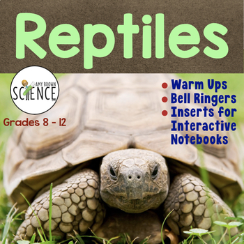 Reptiles Warm Ups, Interactive Notebook Pages, Bell Ringers