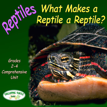 Reptiles – What Makes a Reptile a Reptile (Nonfiction Science and Literacy Unit)