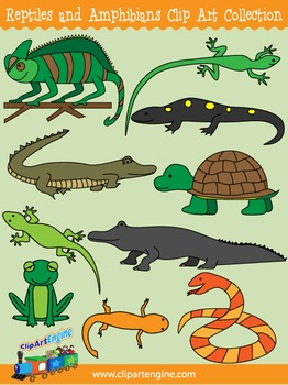 Reptiles and Amphibians Clip Art Collection