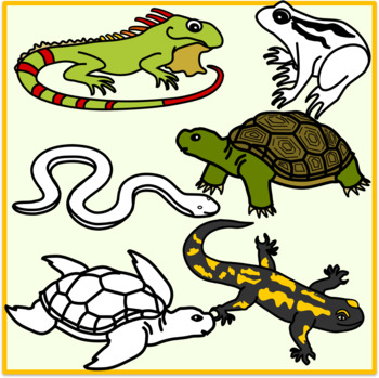 Reptiles and Amphibians Clipart (Animals)