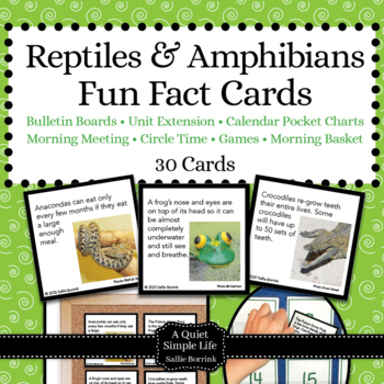 Reptiles And Amphibians Worksheets Teaching Resources TpT