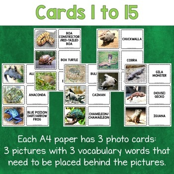 Reptiles and Amphibians Photo Flash Cards