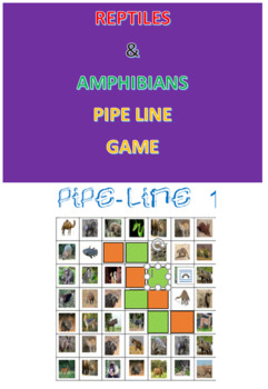 Reptiles and Amphibians Pipe Line Game