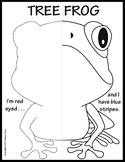 Reptiles and Amphibians Symmetry Activity Coloring Pages