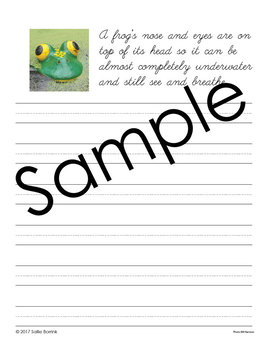 Reptiles and Amphibians Unit - Copywork - Print and Cursive - Handwriting