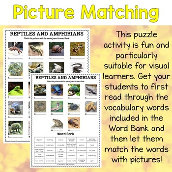 Reptiles and Amphibians Vocabulary Matching Puzzles