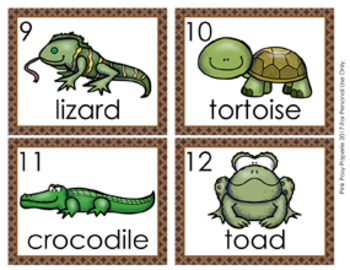 Reptiles and Amphibians Write the Room Activity