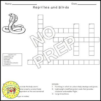 Reptiles and Birds Biology Science Crossword Coloring Worksheet Middle School