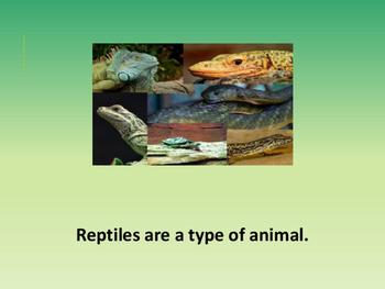 Reptiles intermediate text reader