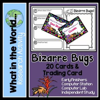 Research Project - Bizarre Bugs