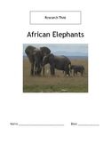 Research This! African Elephants