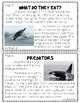 Research Writing - Penguin