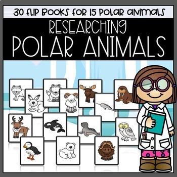 Researching Polar Animals