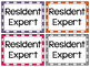 Resident Expert Badges ~ FREEBIE ~ Empower your Students t