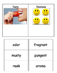 Resource ELA: Sensory Language Word Sort