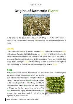 Resource: Origins of Domestic Plants