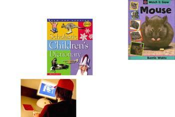 Resources (Dictionary, Atlas, Encyclopedia, Non-fiction books, Internet)