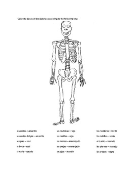 Resources for Spanish teachers (body parts)