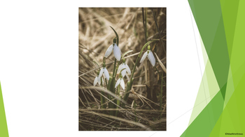 Resources for Spring - Images of Spring