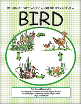 Resources for Teaching about the Life Cycle of a Bird